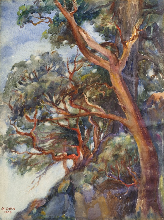 Artwork by Emily Carr,  Arbutus Trees