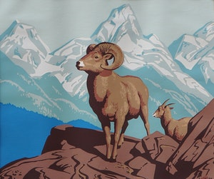 Artwork by Alfred Joseph Casson, Rocky Mountain Sheep