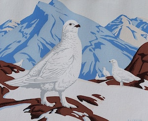 Artwork by Alfred Joseph Casson, White Tailed Ptarmigan