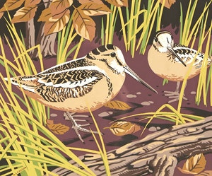 Artwork by Alfred Joseph Casson, Two Birds