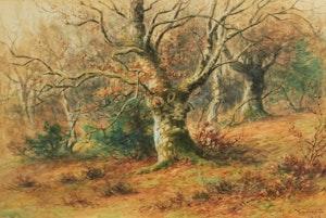 Artwork by Frederick Arthur Verner, Forest Landscape