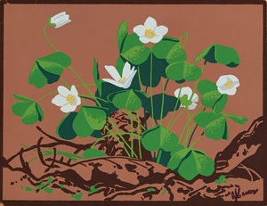 Artwork by Alfred Joseph Casson, White Clover
