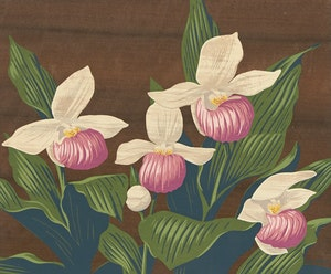 Artwork by Alfred Joseph Casson, Floral Still Life
