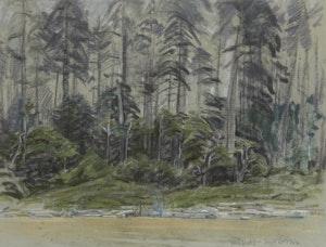 Artwork by Joseph Francis Plaskett, Edge of the Woods