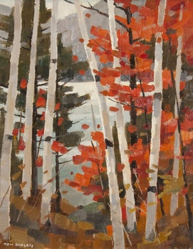 Artwork by Thomas Keith Roberts, Red Maple, Gatineau National Park