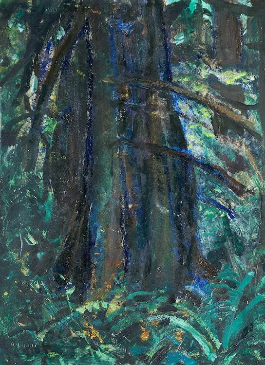 Artwork by Arthur Lismer,  Dark Tree - B.C. Forest