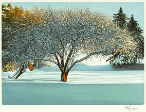 Artwork by Kenneth Danby, After Snowfall