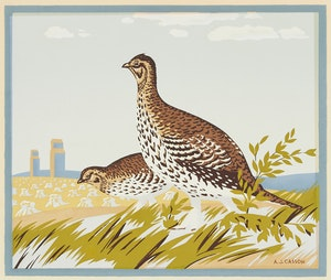 Artwork by Alfred Joseph Casson, The Sharp Tailed Grouse