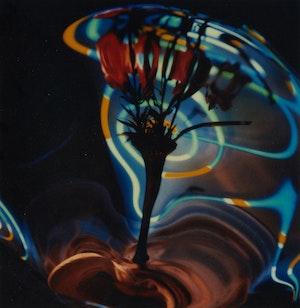 Artwork by Don Jean-Louis, Neon Vertigo