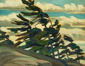 Artwork by Peter Haworth, Pine Trees - Georgian Bay