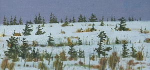 Artwork by Bruno Joseph Bobak, Field in Winter, Newfoundland