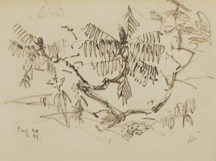 Artwork by Arthur Lismer,  Landscape Detail