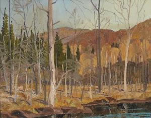 Artwork by Joachim George Gauthier, Swamp in Haliburton