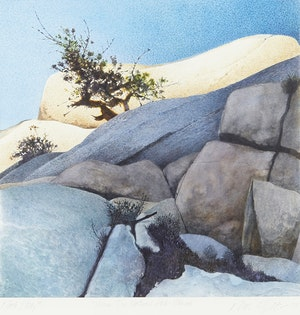 Artwork by Ronald William Bolt, Rock Study #1 (Joshua Tree National Park - Mohave)