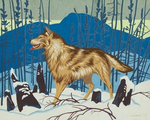 Artwork by Alfred Joseph Casson, Wolf in Winter