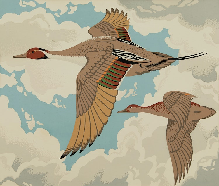 Artwork by Alfred Joseph Casson,  Pintail; Green-Winged Teal