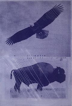 Artwork by Carl Beam, Observer 3