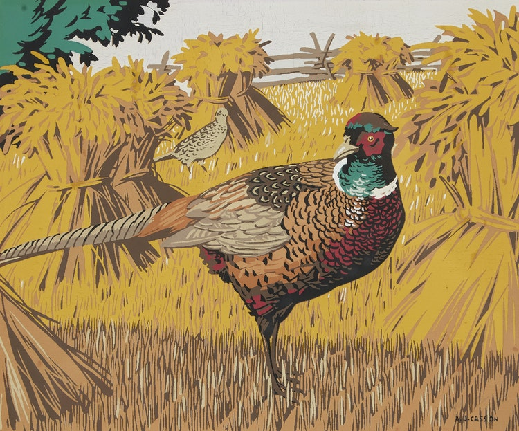 Artwork by Alfred Joseph Casson,  Ringed Neck Pheasant