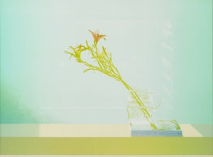 Artwork by Carl Heywood, Story in Sunshine