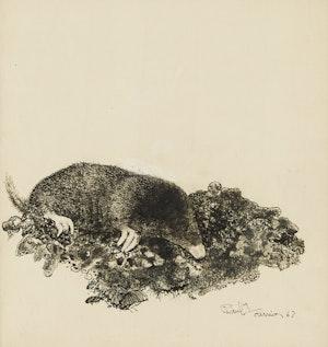 Artwork by Richard Ferrier, Mole Burrowing