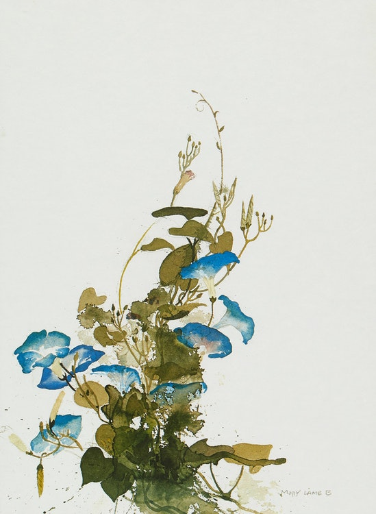 Artwork by Molly Lamb Bobak,  Pair of Floral Studies