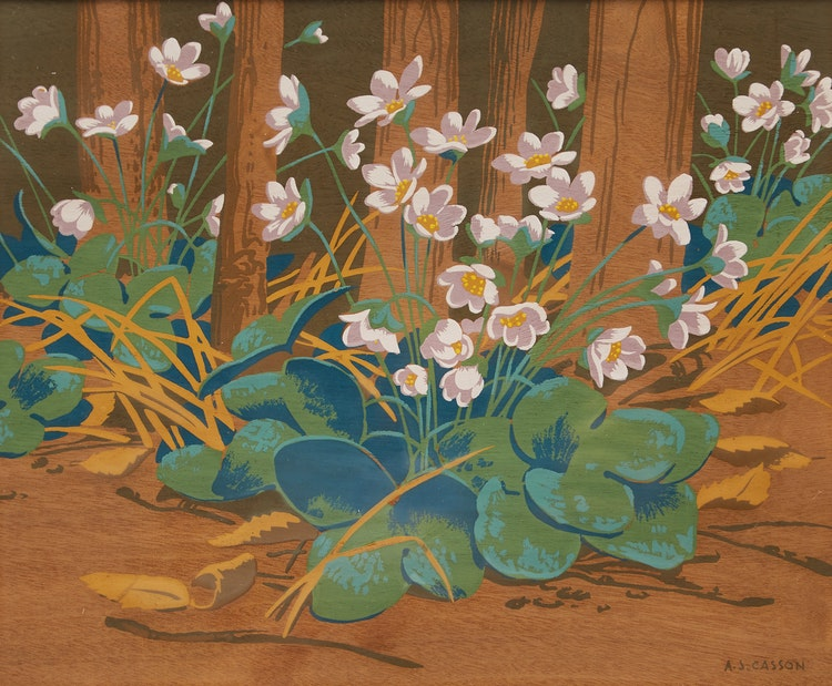 Artwork by Alfred Joseph Casson,  Hepatica Flowers