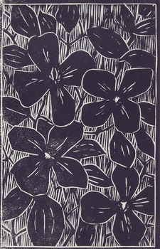 Artwork by John Harold Thomas Snow, Clematis; Lise; Interior