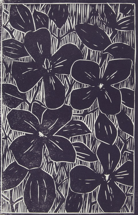 Artwork by John Harold Thomas Snow,  Clematis; Lise; Interior