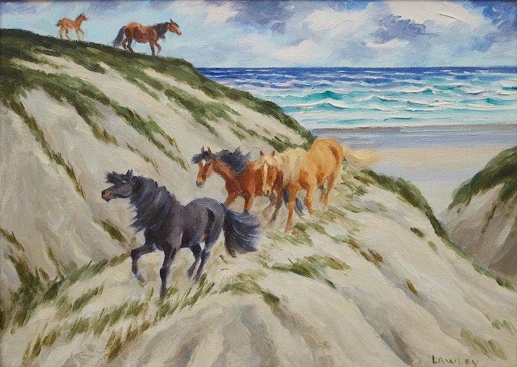 Artwork by John Douglas Lawley,  Sable Island