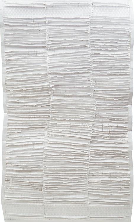 Artwork by Kelly Jazvac,  Paper Towel (Bath) (2007)