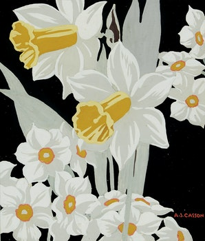 Artwork by Alfred Joseph Casson, Daffodils