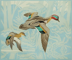 Artwork by Alfred Joseph Casson, Green Winged Teal