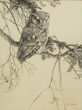 Artwork by Robert Bateman, Owl Sketch
