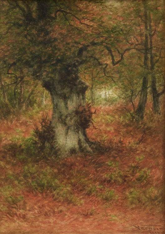 Artwork by Frederick Arthur Verner,  An Old Birch Tree