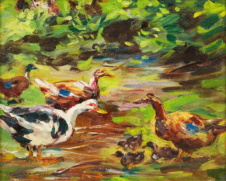 Artwork by Elizabeth Annie McGillivray Knowles,  Ducks and Ducklings