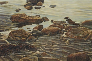 Artwork by Robert Bateman, Flight of the Plover