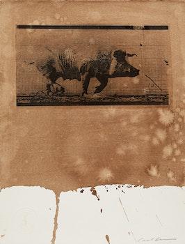 Artwork by Carl Beam, Untitled (Pig)
