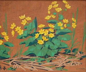 Artwork by Alfred Joseph Casson, Marsh Marigolds