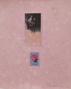 Artwork by Carl Beam, La Rosa