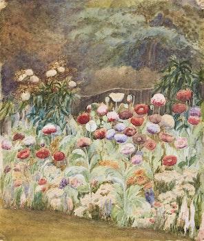 Artwork by Frances Anne Hopkins, Wild Poppies