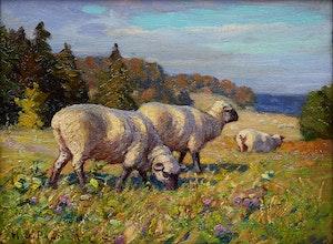 Artwork by Herbert Sidney Palmer, Sheep Grazing in Pasture