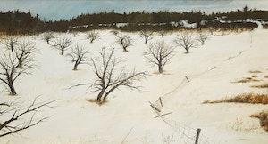 Artwork by Thomas de Vany Forrestall, Forgotten Orchard