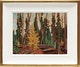 Thumbnail of Artwork by Lawren Stewart Harris,  Algoma Sketch XCII (Algoma Autumn), ca. 1920-21