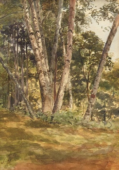 Artwork by James Edward Hervey MacDonald, Birch Woods