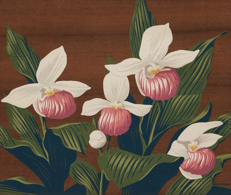 Artwork by Alfred Joseph Casson,  Lady Slipper Orchids; Marsh Marigolds