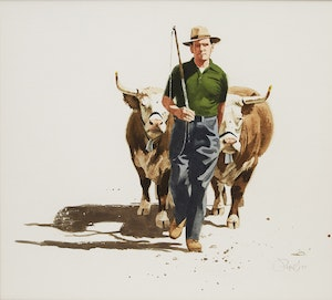 Artwork by Rolfe Pryne, Oxen