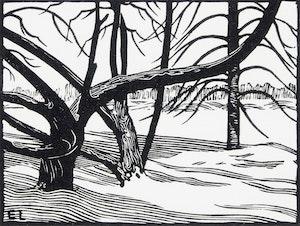 Artwork by Ernest Lindner, Bare Trees