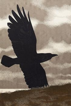 Artwork by David Alexander Colville, Raven