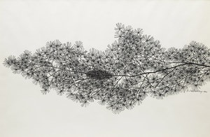Artwork by Jacques Hnizdovsky, Pine Branch