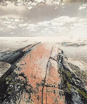 Artwork by Edward John Bartram, Whaleback #3
